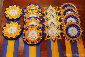 наградные розетки для конных соревнований