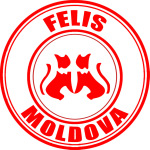 felis-moldova3