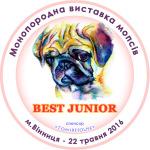 серединка-мопсы-2016