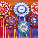 чемпионские наградные розетки